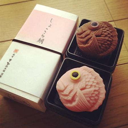chocola-tai.jpg